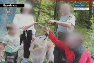 Житель Озерска зверски убил детеныша косули