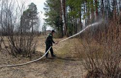 Потушены два лесных пожара