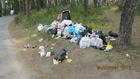 Чисто там, где не мусорят и убирают