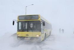 О движении автобусов  в праздничные дни